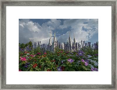 Lds Garden Flowers Framed Print