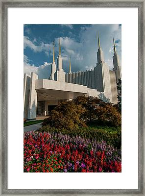 Lds Recieving Area Framed Print
