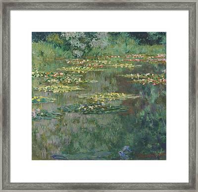 Le Bassin Des Nympheas 1904 Framed Print by Claude Monet