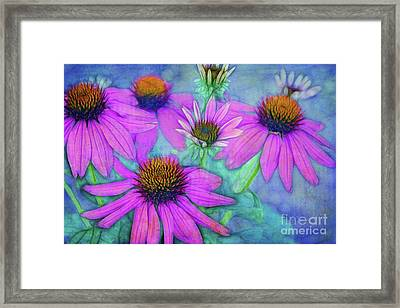Le Clan Des Cinq Framed Print by Variance Collections