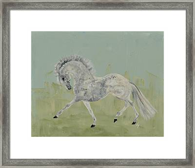 Le Gris Cheval Framed Print by Liz Pizzo