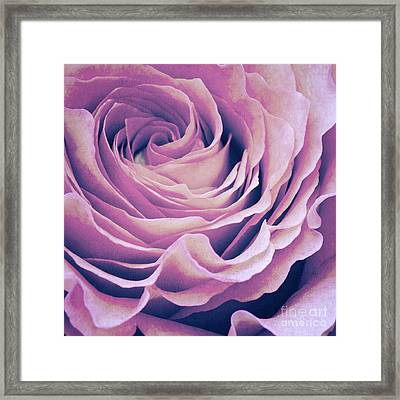 Le Petale De Rose Pourpre Framed Print by Angela Doelling AD DESIGN Photo and PhotoArt