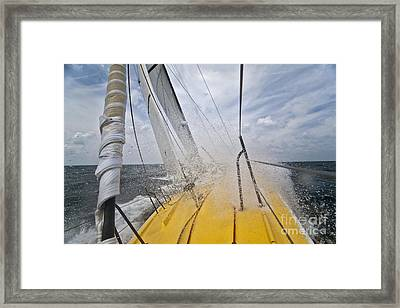 Le Pingouin Charging Upwind Framed Print
