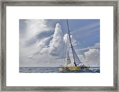 Le Pingouin Race Yacht Open 60 Framed Print
