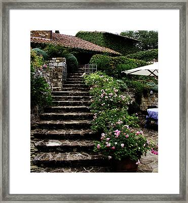 Le Scale Framed Print