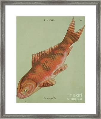 Le Vermillon Framed Print