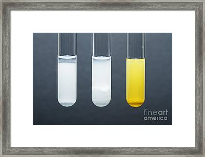 Lead Halide Precipitates Framed Print