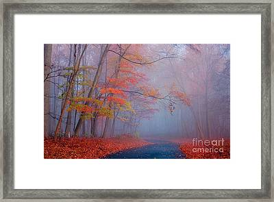 Journey Framed Print by Rima Biswas
