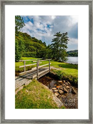Lead The Way Framed Print by Adrian Evans