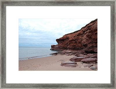 Lead The Way Framed Print by Alexa Gurney