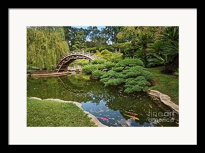 Japanese Garden Framed Prints