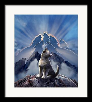 Wolfs Framed Prints