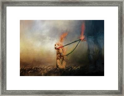 Leading Him Out Of The Storm Dog Art Framed Print by Jai Johnson