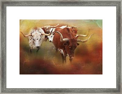 Framed Print featuring the photograph Leading The Herd by Toni Hopper