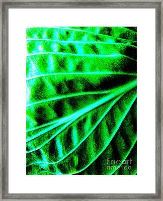 Leaf 2 Abstract Framed Print