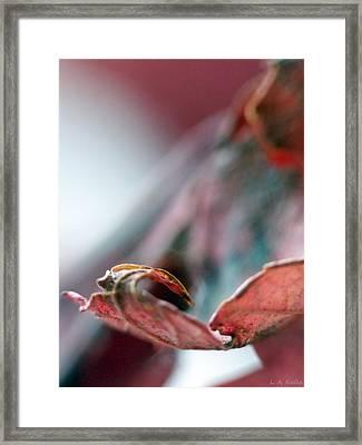Leaf Abstract I Framed Print