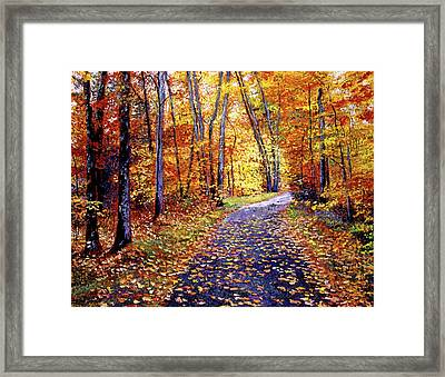 Leaf Covered Road Framed Print by David Lloyd Glover