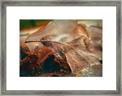 Leaf Encased In Ice Framed Print by Bellesouth Studio