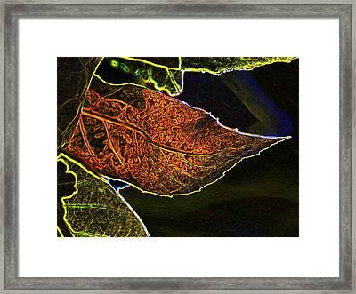 Leaf Interpretation Framed Print by Norman  Andrus