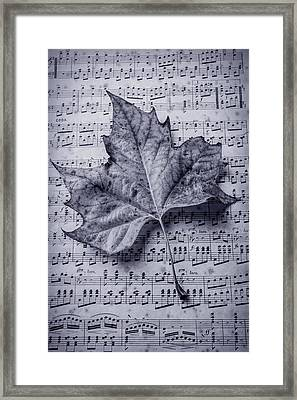 Leaf On Sheet Music In Black And White Framed Print by Garry Gay