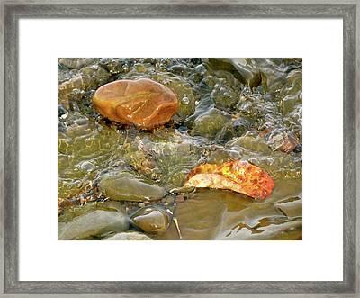 Leaf, Rock Leaf Framed Print