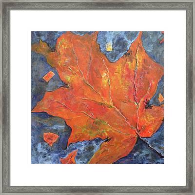 Leaf Seeking Rest Framed Print by Cynthia Matthews