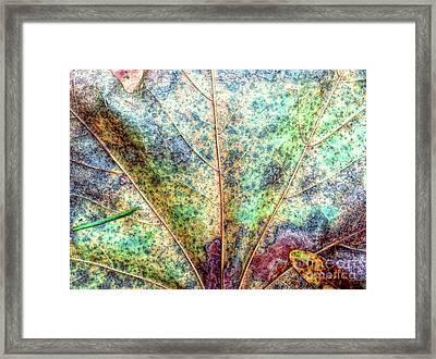 Leaf Terrain Framed Print