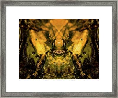 Leaf Water Worrior Framed Print
