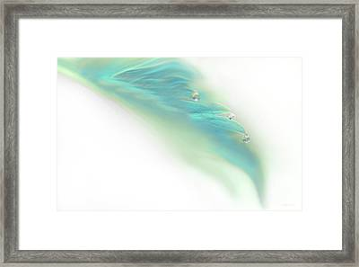 Framed Print featuring the photograph Leaf With Water Drops Teal by Jennie Marie Schell