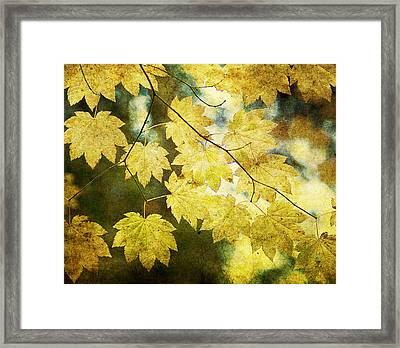 Leaf Zen T Framed Print by Rebecca Cozart