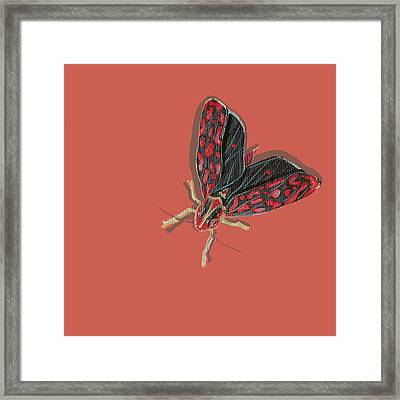 Framed Print featuring the painting Leafhopper by Jude Labuszewski