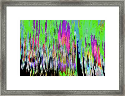 Framed Print featuring the photograph Leafless Trees by Tony Beck