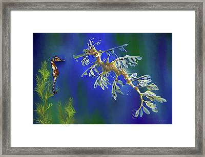 Leafy Sea Dragon Framed Print by Thanh Thuy Nguyen