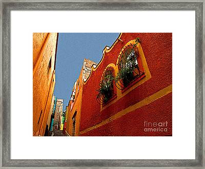 Leafy Windows Framed Print by Mexicolors Art Photography