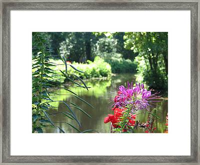 Leamings Run 16 Framed Print by Kevin  Sherf