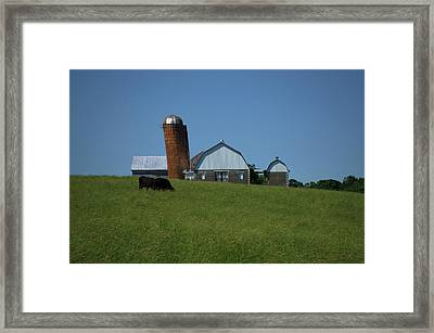 Framed Print featuring the photograph Lean Beef by Robert Geary