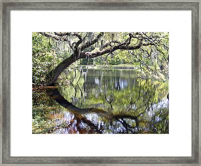 Lean On Me At The Birthplace Of America Framed Print by Elena Tudor