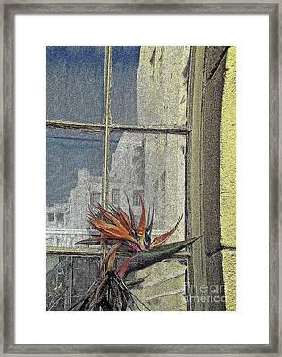 Lean On Me Framed Print by Gwyn Newcombe