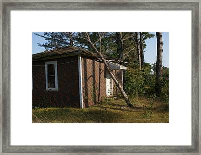 Framed Print featuring the photograph Lean On Me. by Ron Read