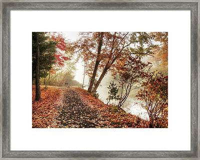 Leaning Tree Framed Print