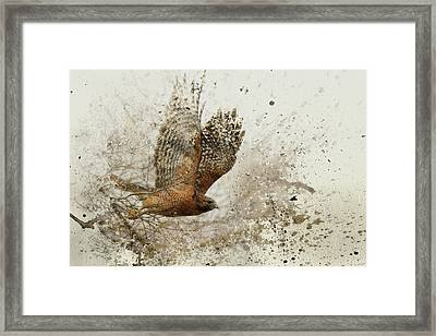 Leap Of Faith Wildlife Art Framed Print by Jai Johnson