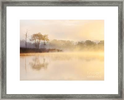 Ledard Point Loch Ard Framed Print by Richard Burdon