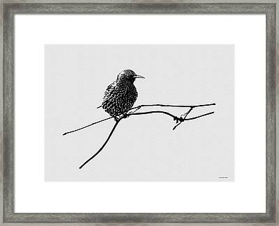 Learning To Fly Framed Print by Ron Jones