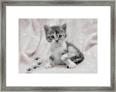 Learning To Sit Like A Lady Framed Print