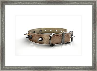 Leather Studded Collar Framed Print by Allan Swart