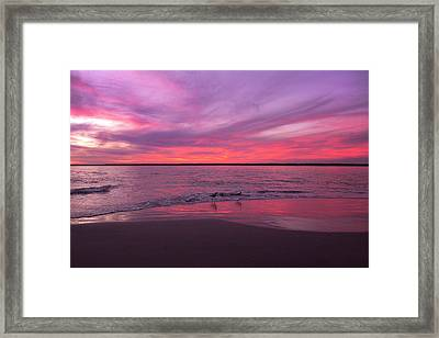 Leave Us To Dream Framed Print