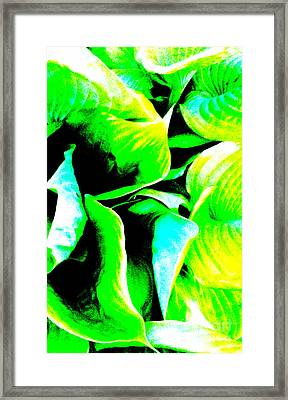 Leaves 1 Abstract Framed Print