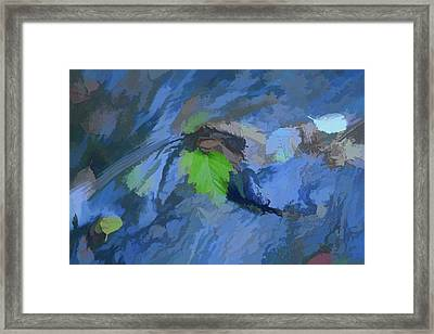 Leaves Afloat Framed Print