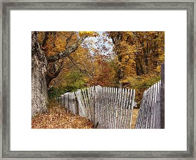 Leaves Along The Fence Framed Print