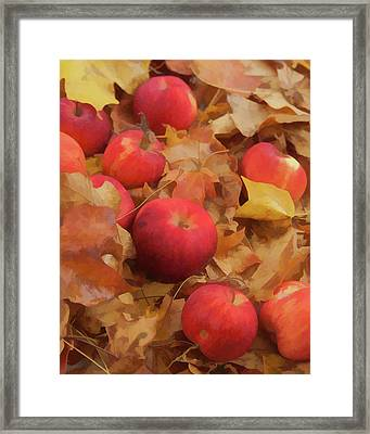 Framed Print featuring the photograph Leaves And Apples by Michael Flood